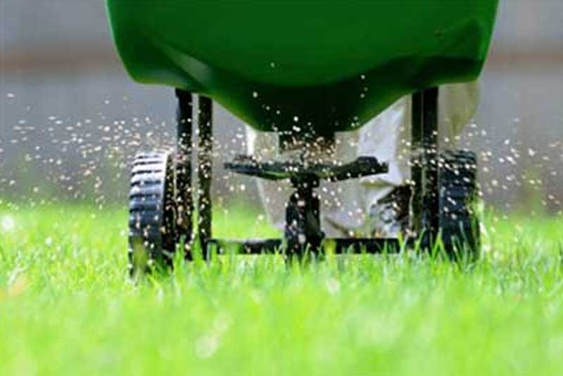 Why should I fertilize my lawn? Is it really necessary?