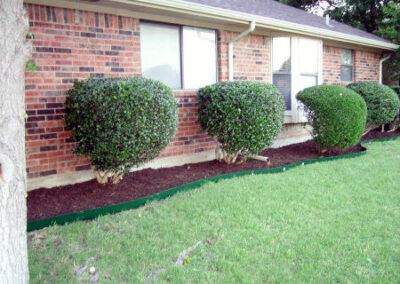 Landscaping / Lawn Care - Lawn Expert - DFW Texas