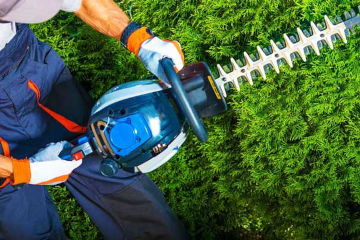 Lawn Trimming Services